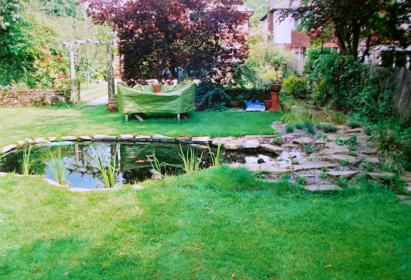 Hanover Ponds Brighon And Hove Previous Pond Design Work