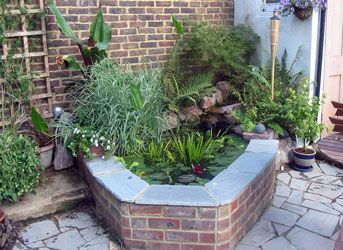 Hanover ponds brighton and hove 39 s water garden specialist for Small garden pond design ideas uk